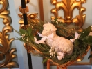 Рождество Христово встретили в мужском монастыре_3