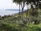 Паломническая поездка в Грецию игумена Афанасия (Гриценко)